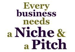 niche-pitch